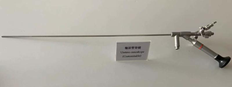 Sauder ureteroscope