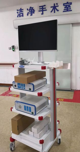 Endoscopic imaging system
